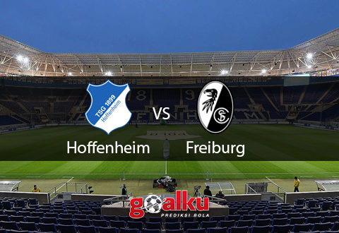 hoffenheim vs freiburg